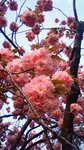 image/2012-04-20T14:27:27-1.jpg