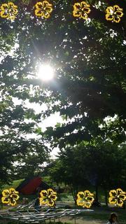 2012-07-09_16.29.37.jpg